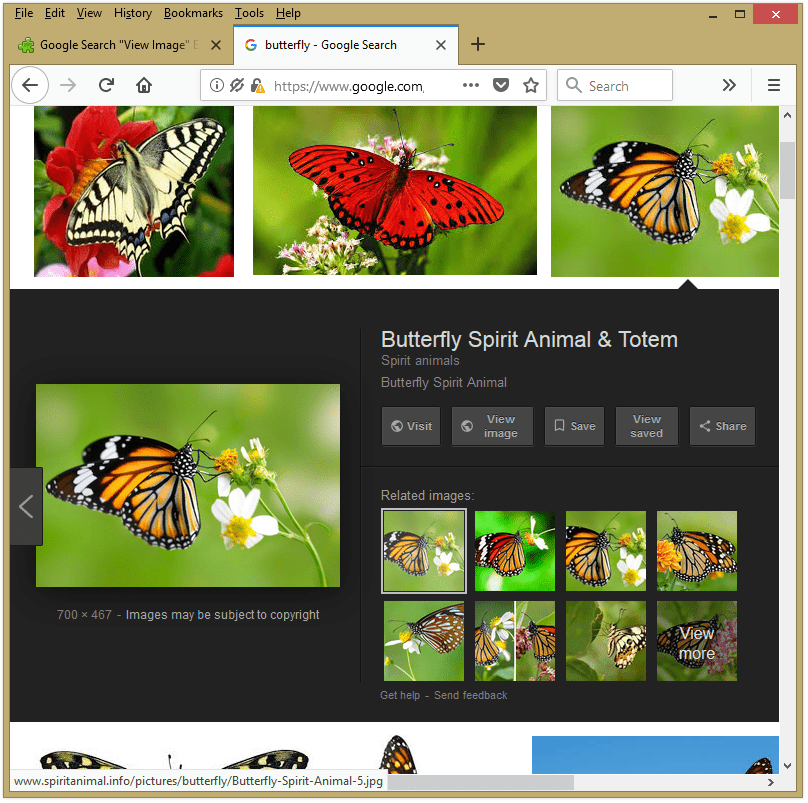 View Image Button in Google Image Search